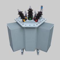 Trasformatore di distribuzione / sommerso / AC / ad uso industriale
