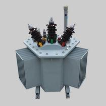 Trasformatore di distribuzione / sommerso / AC / a bassa perdita