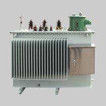 Trasformatore di distribuzione / sommerso / a bassa perdita / resistente ai cortocircuiti