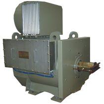 Motore AC / asincrono / 36V / raffreddato ad aria