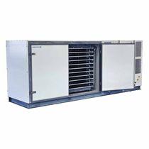 Congelatore di processo / bassa temperatura / per applicazioni alimentari