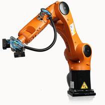 Robot antropomorfo / 6 assi / per movimentazione / in kit