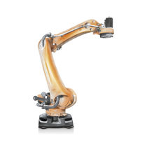 Robot antropomorfo / 5 assi / di pallettizzazione / per carichi pesanti