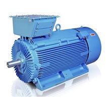 Motore AC / asincrono / 690V / con isolamento elettrico