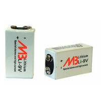 Batteria litio-biossido di manganese / prismatica / primaria