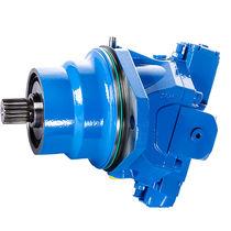 Motore idraulico a cilindrata variabile