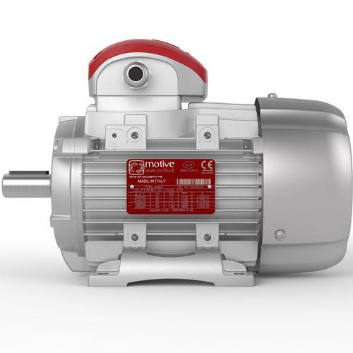 motore trifase / asincrono / 380 V / per alta temperatura