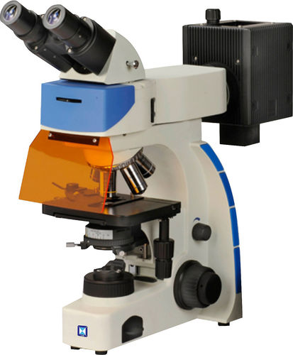 microscopio ottico / per ispezione / a videocamera digitale / FLIM