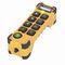 telecomando radio / a pulsanti configurabili / a 2 pulsanti / con interruttore per arresto di emergenza