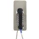 telefono analogico / SIP / IP65 / IP55