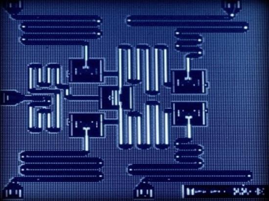 Un'unità di elaborazione di cinque qubit, cortesia di IBM