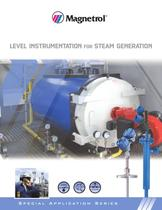 Level Instrumentation for Steam Generation