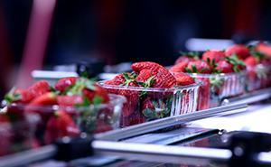 Trasformazione di frutta e verdura