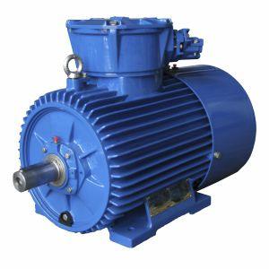 motore antideflagrante / trifase / 1000 V / 4 poli