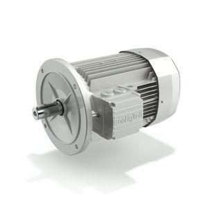 motore IE2
