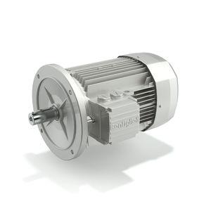 motore IE1