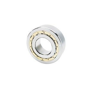 cuscinetto a rulli cilindrici / radiale / a corona singola / in acciaio