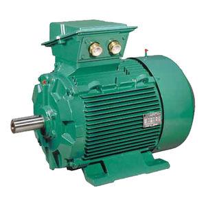 motore AC / trifase / ad induzione / 400 V