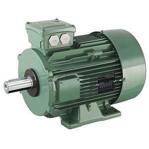 motore trifase / ad induzione / 400 V / 380 V