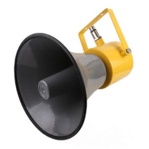 amplificatore sonoro