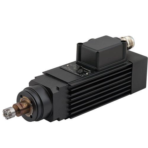 motore per mandrino / AC / asincrono / 220V