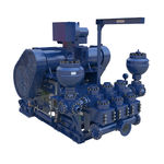pompa di foratura / per fanghi / alternativa / per applicazioni offshore