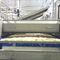 cuocitore industriale con refrigeratore / per riso / continuoCabinplant A/S