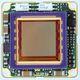 telecamera scheda / di monitoraggio / a colori / CMOS