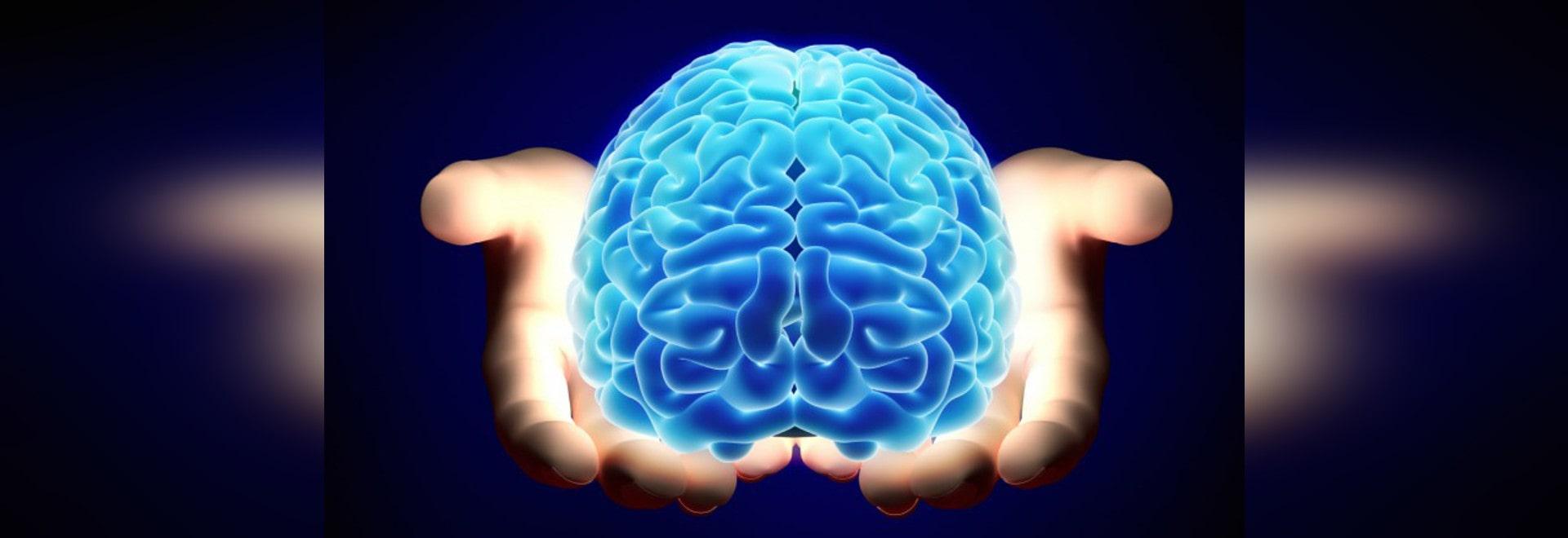 NEUROROBOTICS: CHE ROBOT POSSONO INSEGNARCI GLI STATI UNITI CIRCA