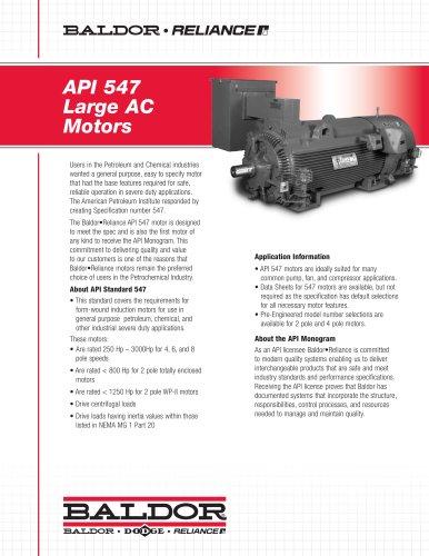 API 541 Large AC Motors