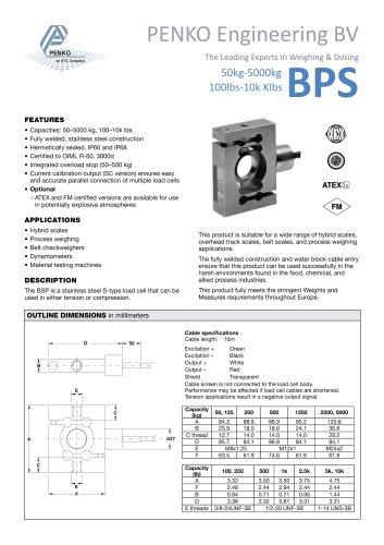 Type BSP