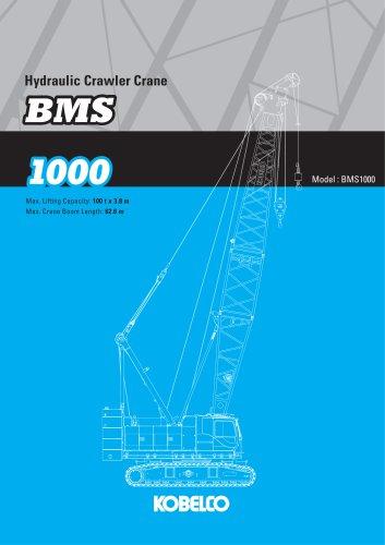 BMS1000