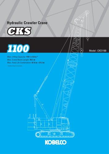 CKS1100