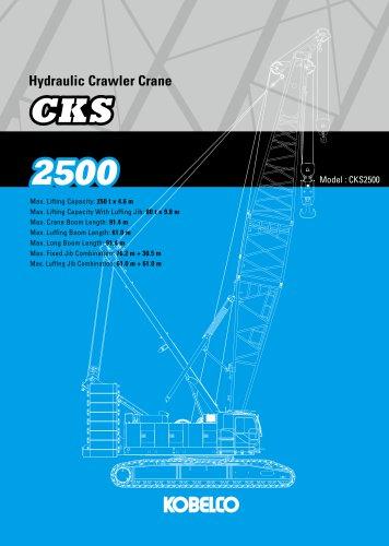 CKS2500