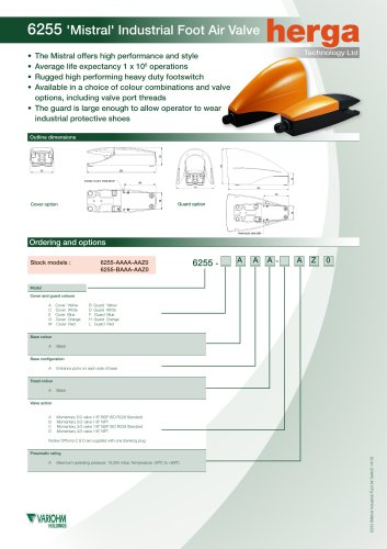 6255 Mistral Industrial Foot Air Valve