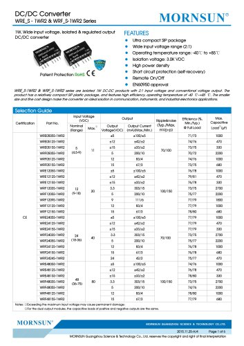 WRF_S-1WR2 / 2:1 / 1watt DC-DC converter / Single output