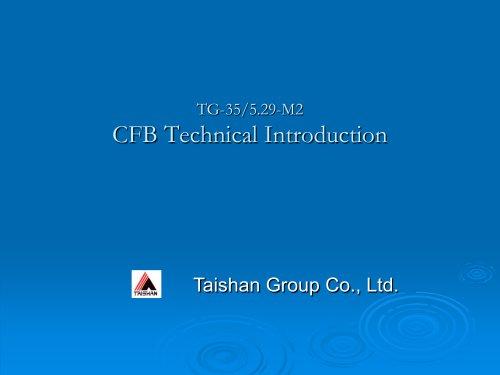 Taishan Group CFB boiler