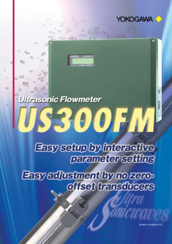 Ultrasonic Flowmeter US300FM