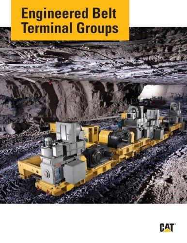Engineered Belt Terminal Groups