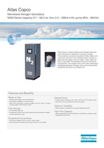 Membrane Nitrogen Generators