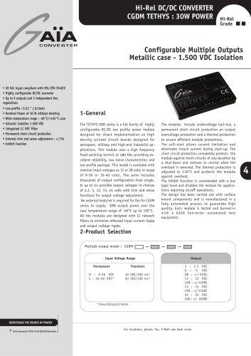 DC/DC Module Datasheet 30 Watts Series