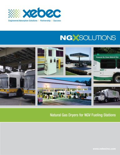 Natural Gas NGX Solutions