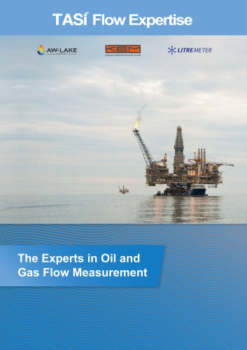 The Experts in Oil and Gas Flow Measurement