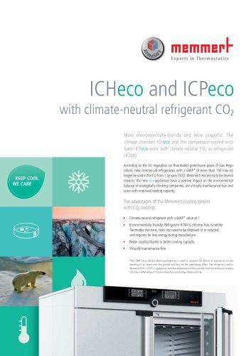 Flyer ICHeco / ICPeco