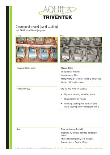 Cleaning of mould B&W - Case study