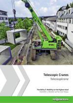 Telescopic Cranes