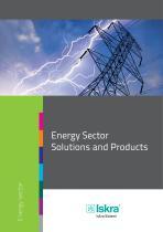 Energy Sector