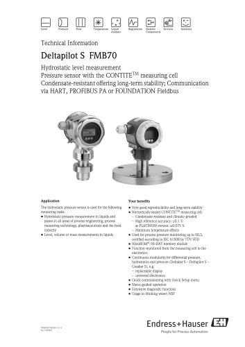 Deltapilot S FMB70