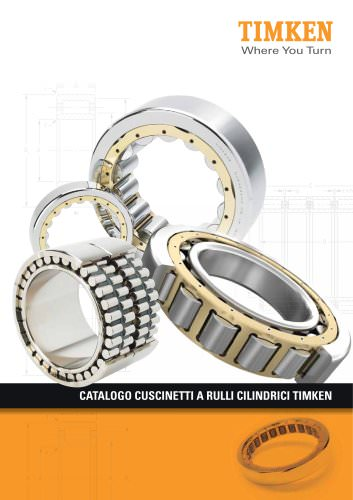 Catalogo dei cuscinetti a rulli cilindrici Timken