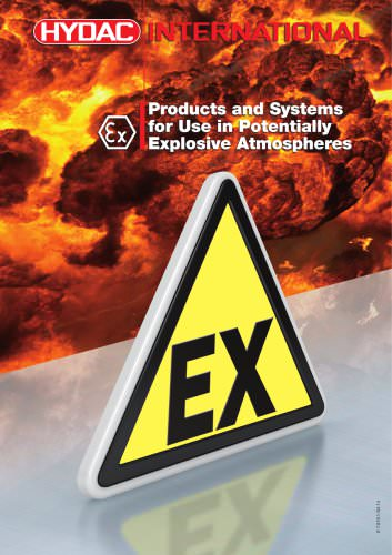 Products and Systems for Use in Potentially Explosive Atmospheres